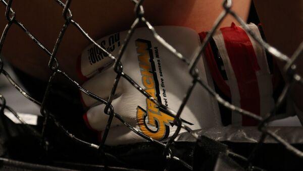 arts martiaux mixtes - Sputnik France