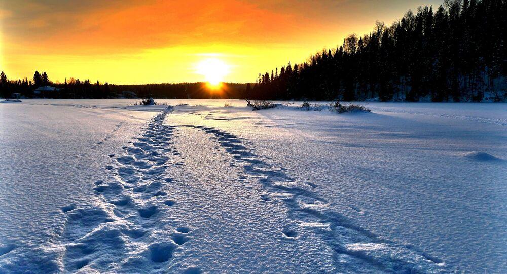 Des traces sur la neige (image d'illlustration)