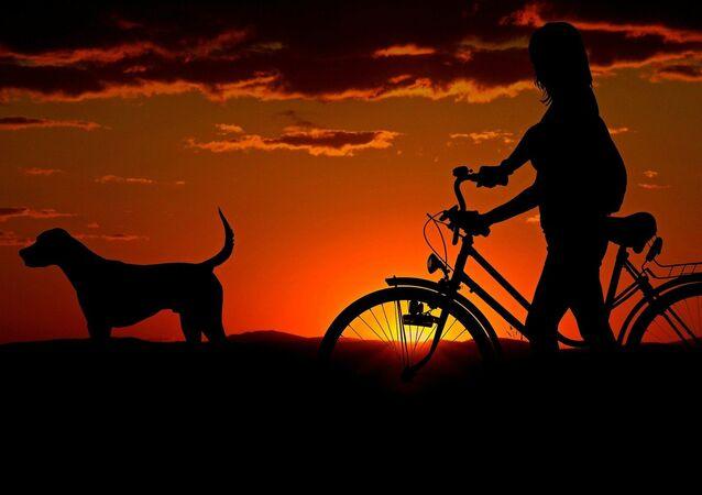 Un chien et une propriétaire