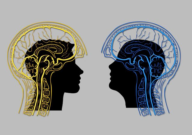 Cerveau, image d'illustration
