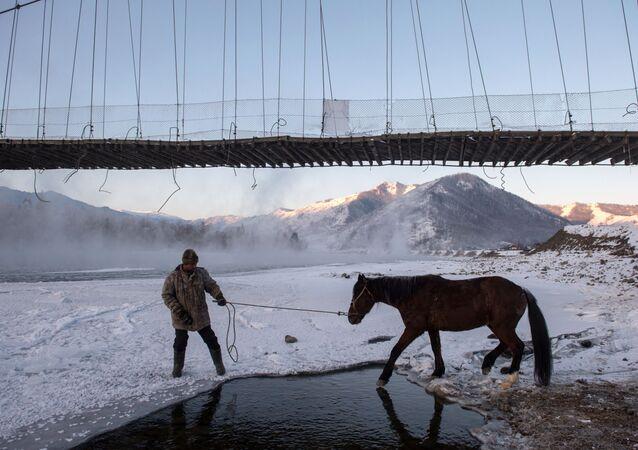 Opération de sauvetage de chevaux tombés dans une rivière gelée