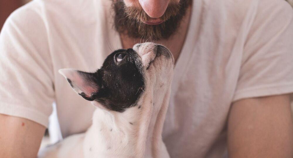Le chien, ami de l'homme