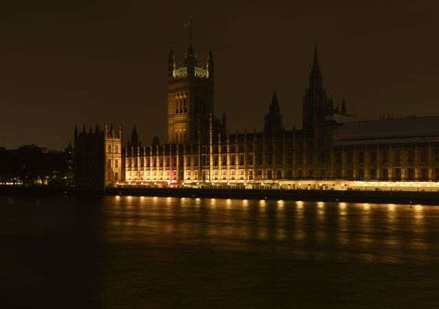 Le Palais de Westminster (archive photo)