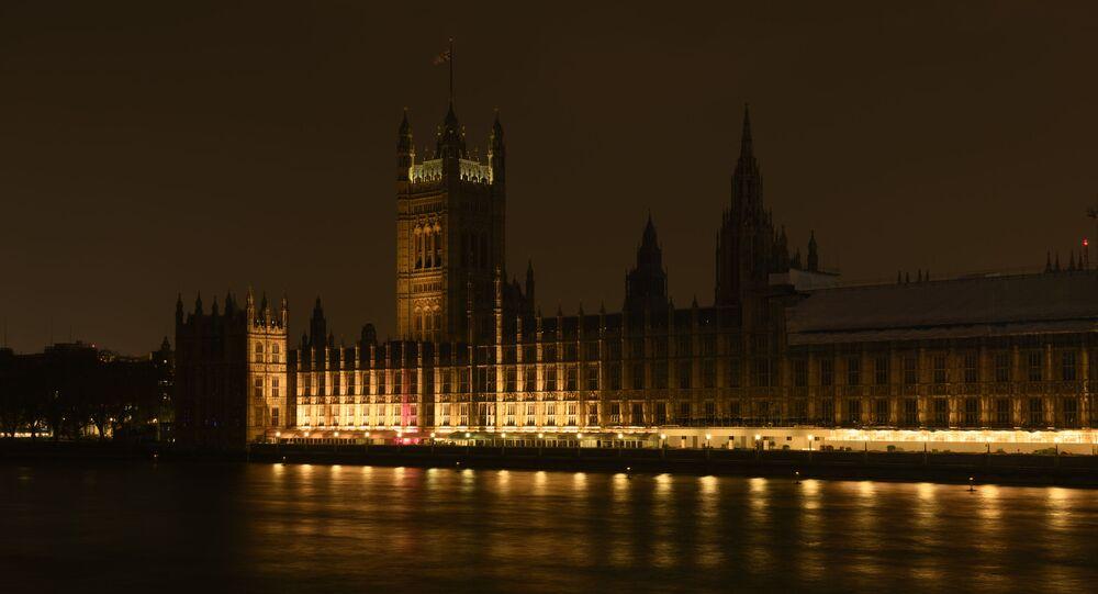 Le Palais de Westminster (archive photo)