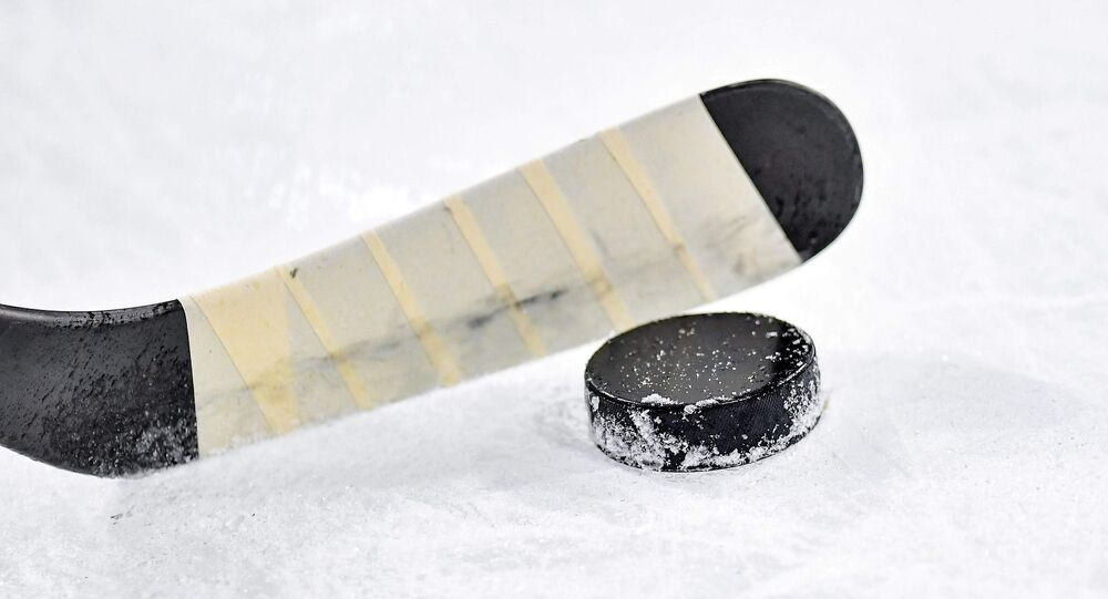 Hockey sur glace (image d'illustration)
