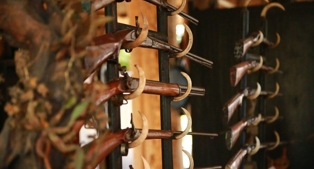 Fusil de chasse, image d'illustration