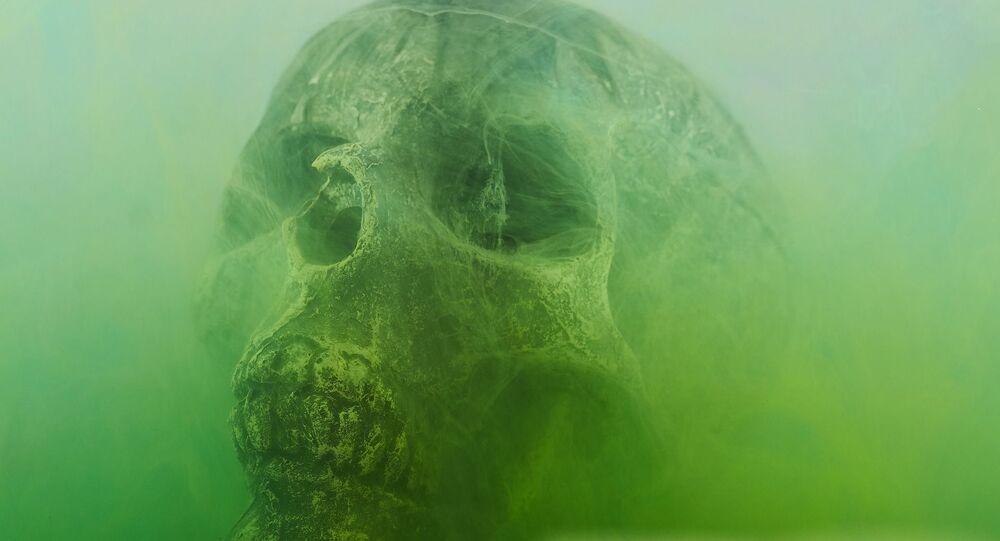 squelette, image d'illustration