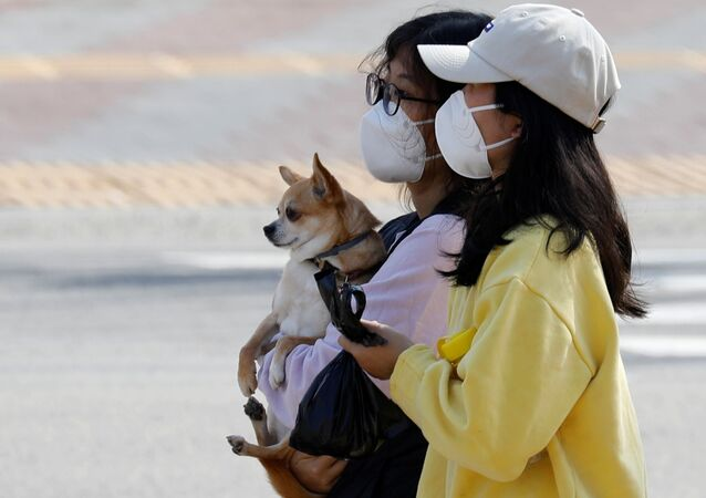 A woman wearing a mask carries a dog as she makes her way on a street amid the rise in confirmed cases of coronavirus disease (COVID-19) in Daegu, South Korea March 8, 2020