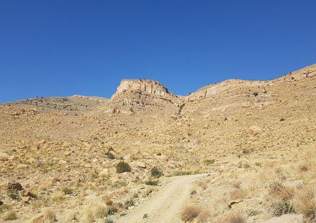 La piste vers Taguetiout (Algérie)