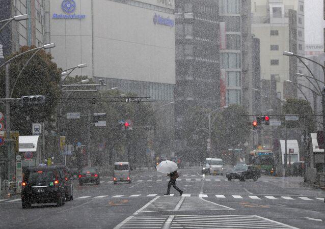 Une chute de neige à Tokyo, le 29 mars 2020