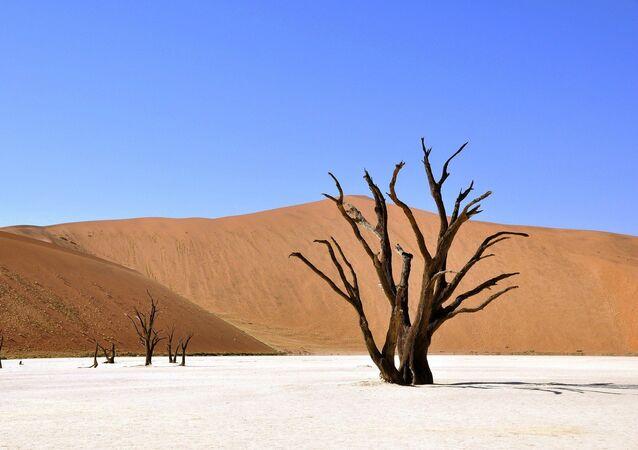 Désert en Afrique (Namibie)