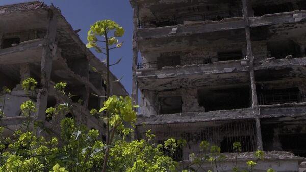 Syrie (image d'illustration) - Sputnik France