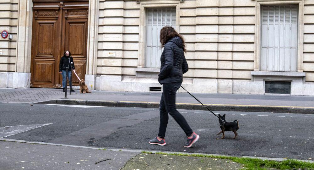 Des femmes promènent leurs chiens pendant le confinement à Paris