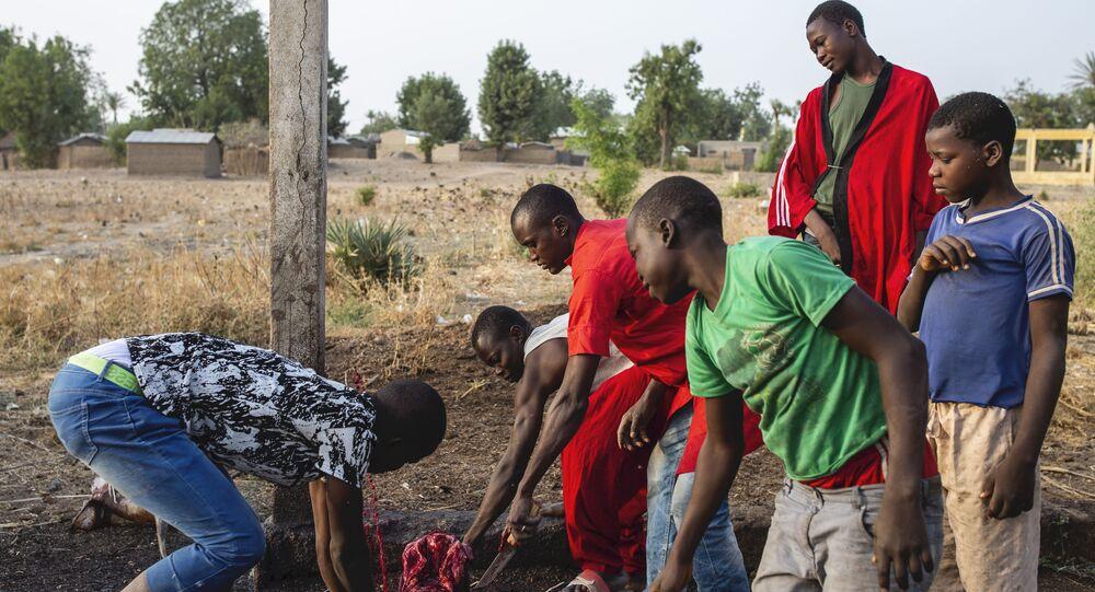Des employés d'un abattoir dans la région de Gazawa, au Cameroun.