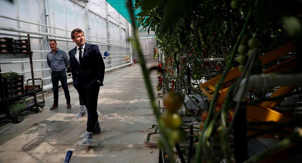 Emmanuel Macron en Bretagne pour soutenir la filière agricole et alimentaire en pleine crise du coronavirus