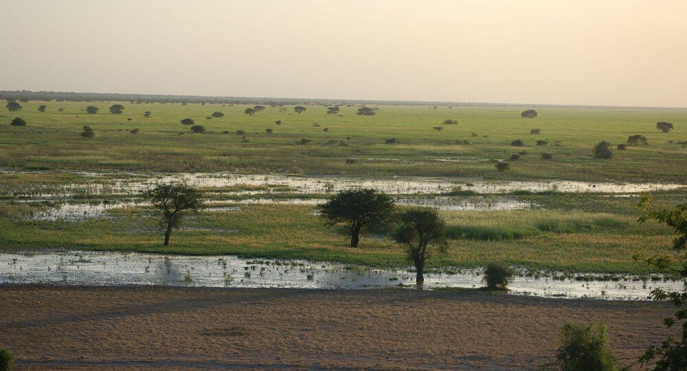 Le parc naturel Waza, au nord du Cameroun.