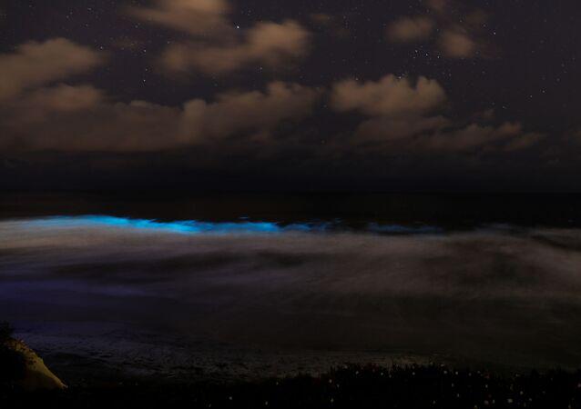 des vagues bioluminescentes en Californie, le 18 avril 2020