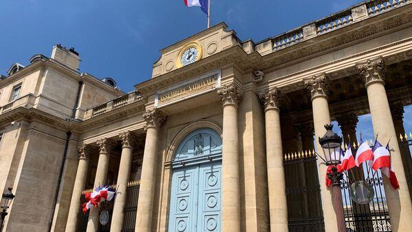 L'entrée de l'Assemblée nationale - Sputnik France