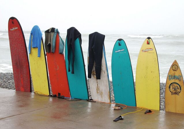Planches de surf (image d'illustration)
