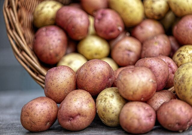 pommes de terre (image d'illustration)