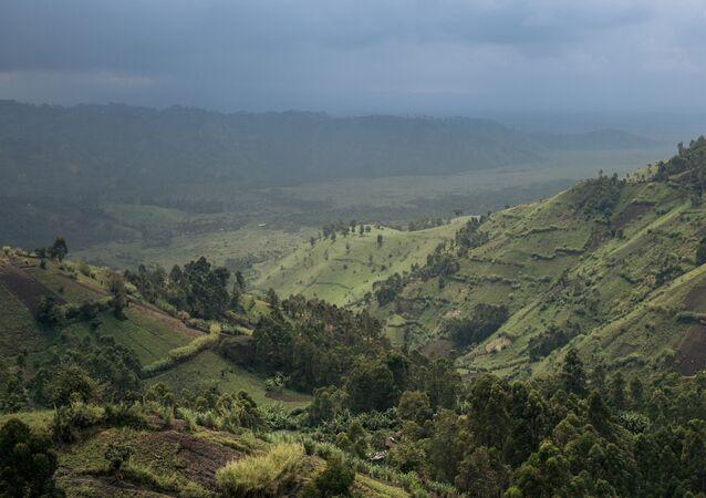 Le parc national des Virunga, au nord-ouest de la RDC.