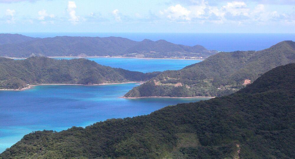 L'île d'Amami O-shima en mer de Chine orientale