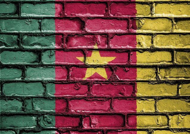 Le drapeau du Cameroun