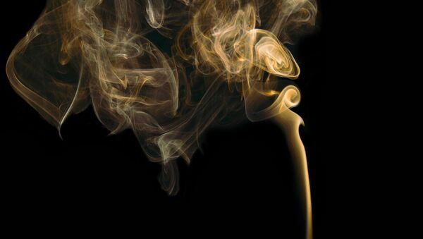 Fumée, odorat - Sputnik France