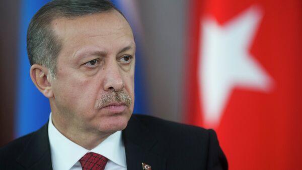 Премьер-министр Турции Реджеп Тайип Эрдоган во время совместной с президентом России Владимиром Путиным - Sputnik France