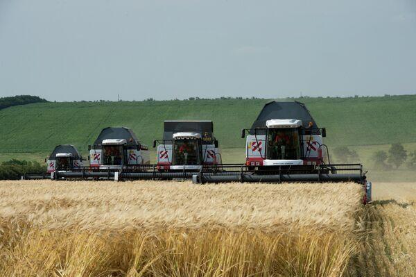 Agriculture: la Russie veut réaliser des projets conjoints avec la Chine - Sputnik France