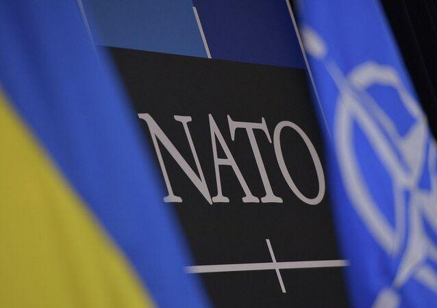 Drapeaux de l'OTAN et de l'Ukraine