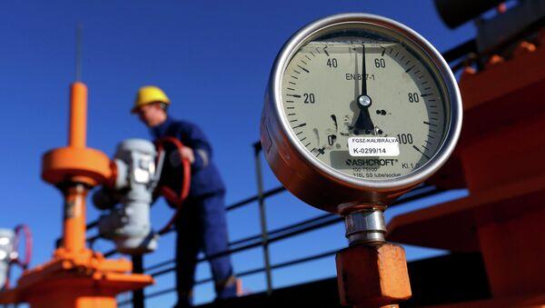 An engineer oversees the gas distribution system in Kiskundorozsma, 170 kilometres south of Budapest, January 15, 2015. - Sputnik France